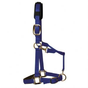 KM Elite Luxury Headcollar